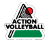 ACTION_VOLLEYBALL